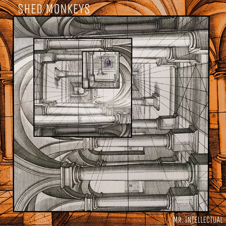 Shed Monkeys- Mr. Intellectual